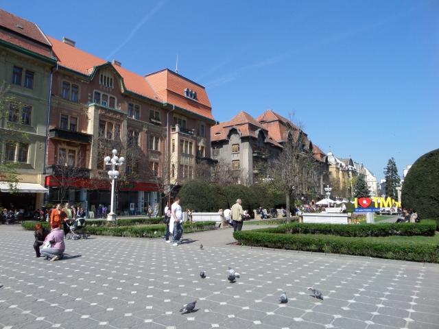 Lovely Timisoara
